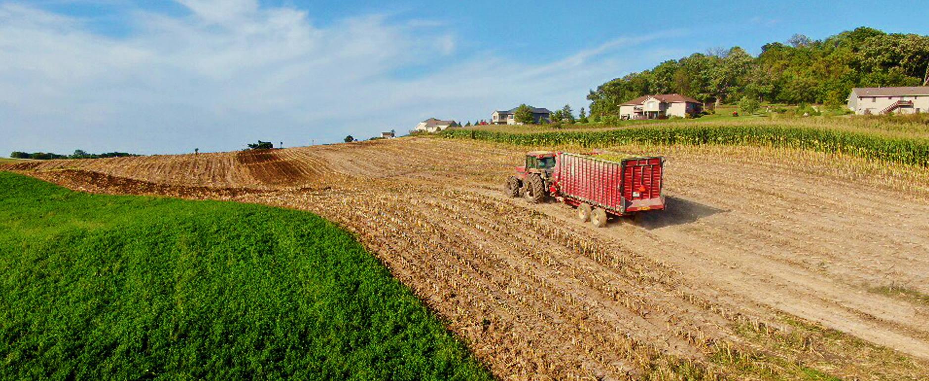 Bolsas para granos y forrajes