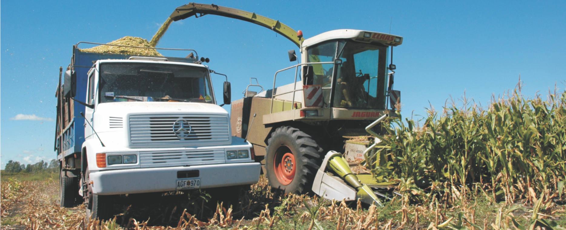 Instructivo de embolsado de granos y forrajes
